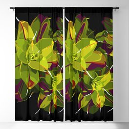 Syntrichia Blackout Curtain