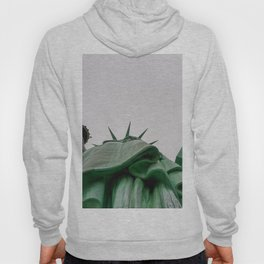 New York City: Statue of Liberty (Color) Hoody