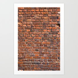 Texture - Brick wall Art Print