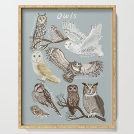 Owls Illustrated Chart Serving Tray