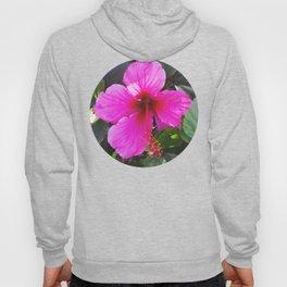 Pink Hibiscus Hoody