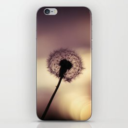 this is a world filled with love iPhone Skin
