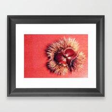 Maroni Framed Art Print