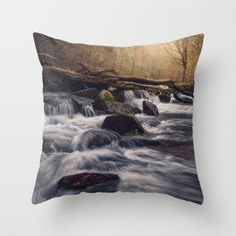 Fingle Cascades Throw Pillow