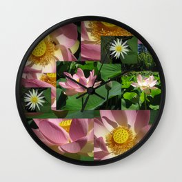lily pond lotus flower plant plants flowers blossoms opening buds bud bloom bright pink Wall Clock