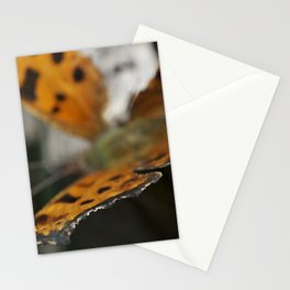 Crisp Wing Stationery Cards