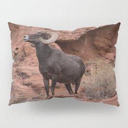 Desert Bighorn, Valley of Fire - III Pillow Sham