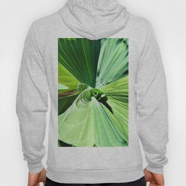 416 - Abstract Plant Design Hoody