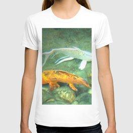 Coy Fish T-shirt