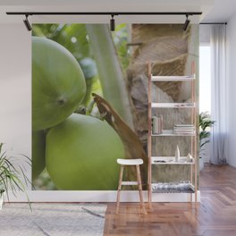 Green Coconut Wall Mural