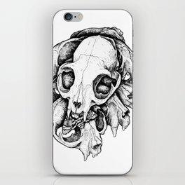 Death's head hawkmoth iPhone Skin
