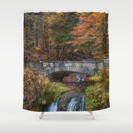 the Stone Bridge Shower Curtain