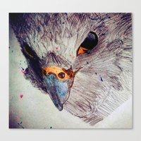 falcon Canvas Prints featuring Falcon by Aaron Carberry