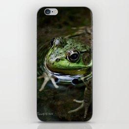 Frog Floating iPhone Skin