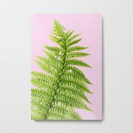 Exotic, green fern leaf Metal Print
