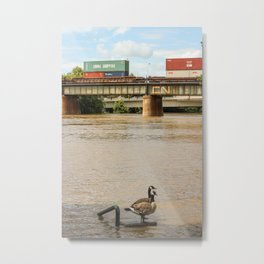 The Forks  Metal Print