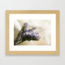 water drop on flower Framed Art Print
