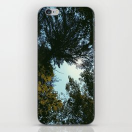 Hiking  iPhone Skin