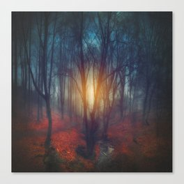cRies and whiSpers Canvas Print