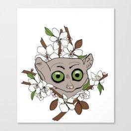 Bush Baby & Almond Tree Canvas Print