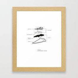 Fig 1 WHT Framed Art Print