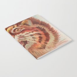 American Wild Cat by A&G Notebook