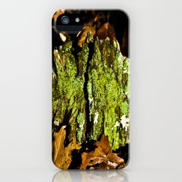 Mountain Moss iPhone Case