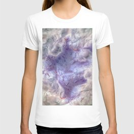 purple agate 0743 T-shirt