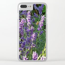 Bumblebee 10 on lavender ahem honey bee actually Clear iPhone Case