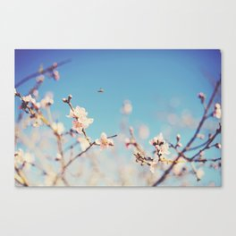 The Bee. Canvas Print