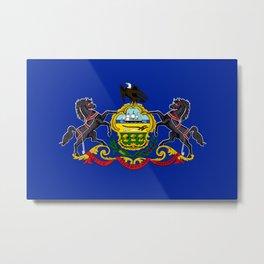 Pennsylvania flag  Metal Print