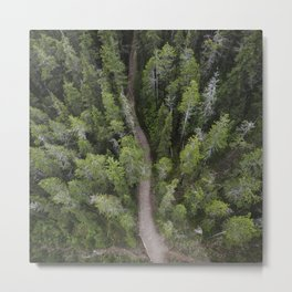 Forest Ariel Photography | Nature | Landscape Photography | Woods Metal Print