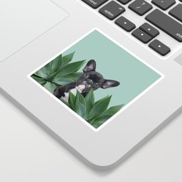 French Bulldog between agave leaves Sticker
