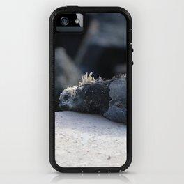 Exhausted Iguanas iPhone Case