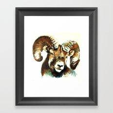 The Ram Framed Art Print
