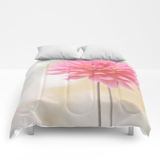 Morning Glow Comforters