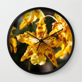 Orchids 17-3 Wall Clock