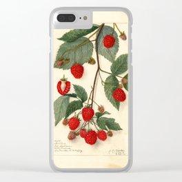 Raspberries Clear iPhone Case