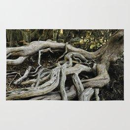 Skidaway Roots Rug