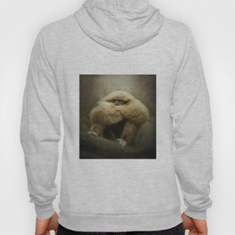 Study of a Gibbon - The Thinker Hoody