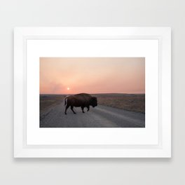 Sunset Buffalo  Framed Art Print