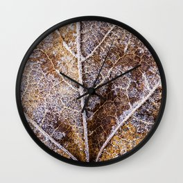 frosty leaf detail Wall Clock