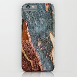 Eucalyptus Tree Bark and Wood Abstract Natural Texture 28 iPhone Case