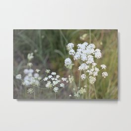A weed is but an unloved flower Metal Print