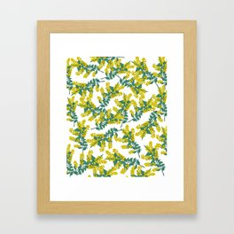 Australian Wattle Framed Art Print