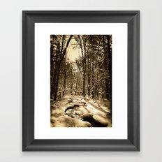 A Natural Path Framed Art Print