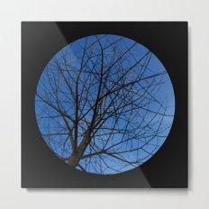 Trees from below 7 Metal Print