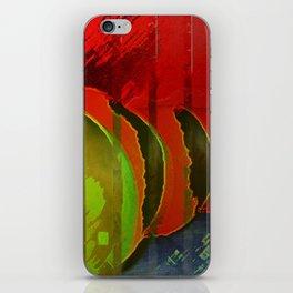 Winter Apples  iPhone Skin