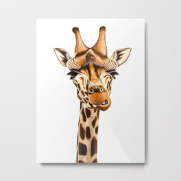 Giraffe painting. White Background Metal Print