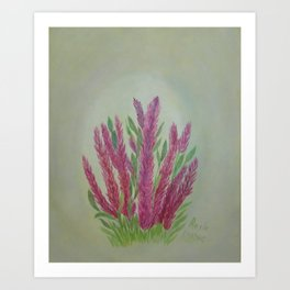 Celosia Botanical Floral Acrylic Art Hand-Painted by Rosie Foshee Art Print